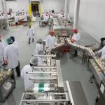 SKFG-production-line